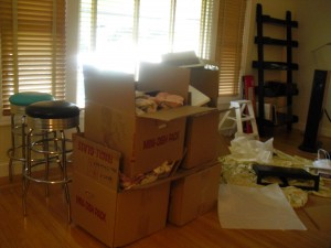 The work of Donna Till, Professional Organizer: Living Room Before